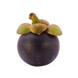 samotny tła owoc mangostanu stojaka biel Fotografia Royalty Free