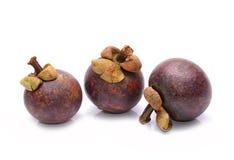 samotny tła owoc mangostanu stojaka biel Obraz Royalty Free