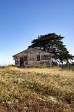 Samotny zaniechany pusty dom z drzewem przeciw niebieskim niebom fotografia royalty free