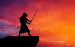 Samouraïs sur la montagne Image libre de droits
