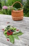 Samovar do russo em uma tabela de madeira rústica com bagas e flores Fotos de Stock Royalty Free