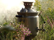 The samovar in the field Stock Photos