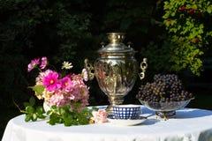 Samovar, tasses de thé, fleurs roses et raisins sur une table couverte Photographie stock libre de droits
