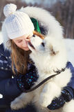 Samoyed husky with owner Royalty Free Stock Photos