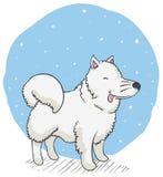 Samoyedo lindo debajo de la nieve con la lengua hacia fuera, ejemplo del vector libre illustration
