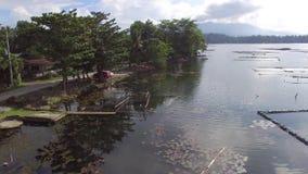 Trees and vegetation on mountain lake shore. Drone aerial. Sampaloc Lake, San Pablo City, Laguna, Philippines - November 21, 2017: Trees and vegetation on stock footage