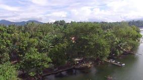 Trees and vegetation on mountain lake shore. Drone aerial. Sampaloc Lake, San Pablo City, Laguna, Philippines - November 21, 2017: Trees and vegetation on stock video