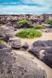 Sampanbok naturlig sten Arkivbilder