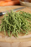 Samphire Royalty Free Stock Photography