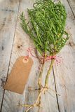 Samphire coastal vegetable. Over wooden background. Salicornia europaea Royalty Free Stock Images