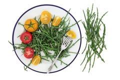 Samphire et nourriture biologique de tomate image stock