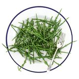 Samphire Sea Vegetable royalty free stock photo