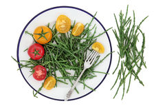 Samphire and Tomato Health Food Stock Image