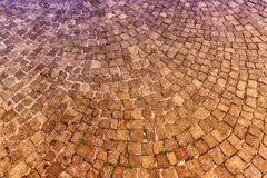 Sampietrini pavement in Rome, may be used as background Stock Photos