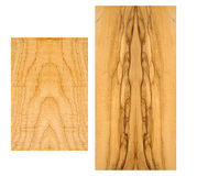 Sample of curly Maple and Olive wood Royalty Free Stock Photo