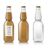 Sample of empty beer bottles Royalty Free Stock Image