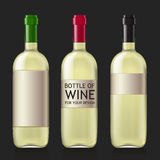 Sample of empty bottles for wine Royalty Free Stock Photo