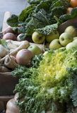 Collect fruit and vegetables. Sample of field collection for sale stock photography