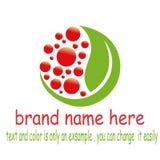 Design fruit leaf logo. Sample fruit leaf logo vector Royalty Free Stock Photography
