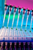 Sample load with multichannel pipette Stock Image