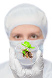 Sample of plant in a test tube, and the face of a biologist Royalty Free Stock Images