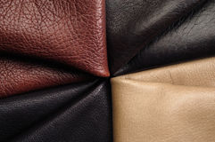 Sample skins of various colors. Fur shows several color gradients royalty free stock photo