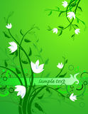 Sample text. The Year background. The White flowerses on green. Text sample Stock Photo