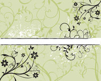Sample Text. Abstract floral background. Vector illustration Royalty Free Stock Photography