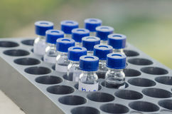 Sample vial in instrumental analysis tray. Blue-cap vials in auto sampling tray that is in front of green blur field Royalty Free Stock Photos