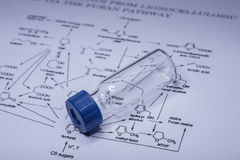 Sample vial on the paper Stock Photography