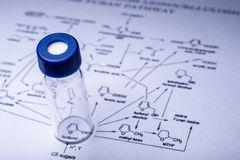 Sample vial on the paper Royalty Free Stock Photography
