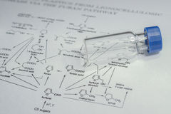 Sample vial on the paper Royalty Free Stock Photos