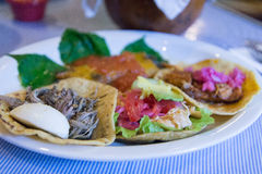 Sampler food, Yucatan food Royalty Free Stock Photos