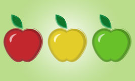 Samples of apples. Set of apples in three different colors Stock Photos