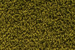 Samples of color a carpet. Covering in shop royalty free stock photos