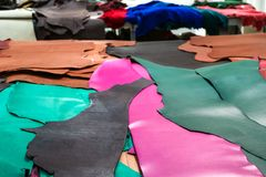 Samples of colored cowhides on table stock photo