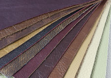 Samples of natural leather. Different from the color samples of genuine leather Royalty Free Stock Images