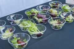 Samples of salad. Salad appetizers in small, plastic bowls Royalty Free Stock Photography