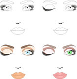 Samples of scheme for makeup application Royalty Free Stock Photo