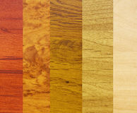 Samples of wood coatings Royalty Free Stock Photo