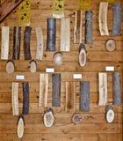 Samplings of different lumbers Stock Image