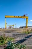 Samson e goliath Gru famose del cantiere navale a Belfast Immagini Stock Libere da Diritti