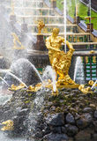 Samson e la fontana del leone in grande cascata di Peterhof, St Petersburg Fotografie Stock Libere da Diritti