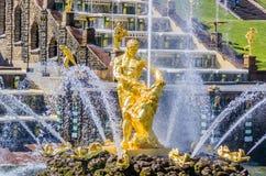 Samson fontanna w Peterhof, Rosja Zdjęcia Royalty Free