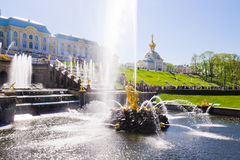 Samson Fountain of the Grand Cascade near Peterhof Palace. Stock Photos