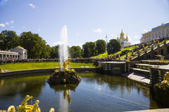 Samson fountain at Pertergof Palace.Saint-Petersburg, Russia Royalty Free Stock Images