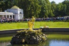 Samson fountain at Pertergof Palace.Saint-Petersburg, Russia Stock Photography