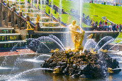 Samson Fountain in Peterhof Palace, Saint Petersburg Royalty Free Stock Photography