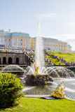 Samson fountain in Peterhof Stock Images