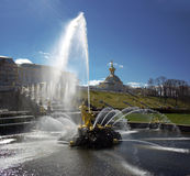 Samson fountain in Peterhof Palace against the background Stock Image